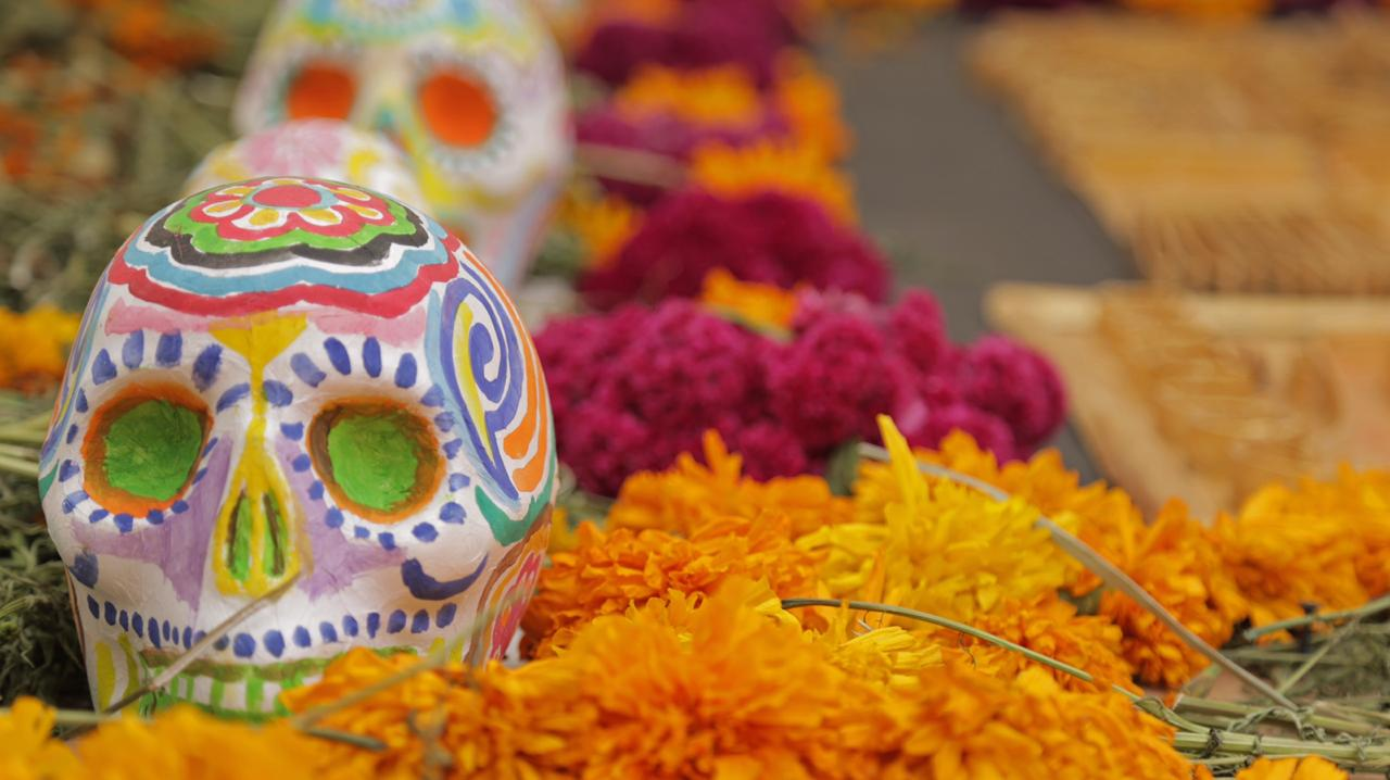 UAATV launches special program for the Day of the Dead in Mexico