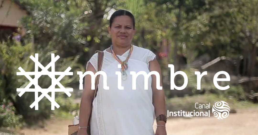 MIMBRE, the series about the peace process in Colombia